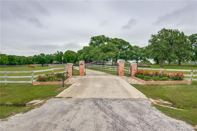 107 Pecan Acres Lane, Argyle, TX 76226 (MLS #14087016) :: Team Hodnett