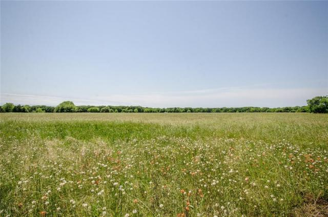Lot 88 Sailboat Drive, Corsicana, TX 75109 (MLS #14087084) :: The Chad Smith Team