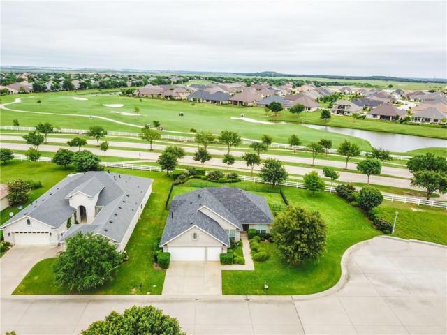 9704 Amber Court, Denton, TX 76207 (MLS #14087993) :: McKissack Realty Group