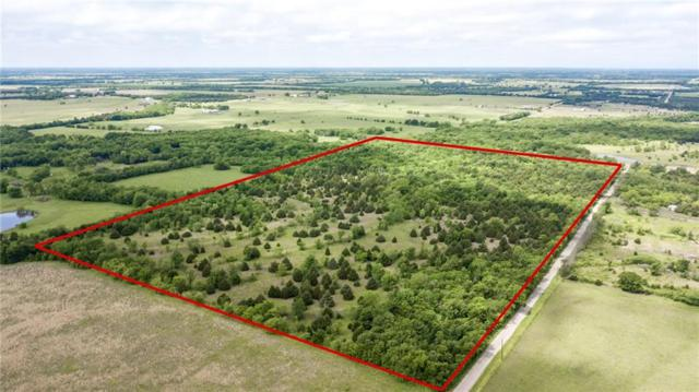 38 acre County Rd 4615, Wolfe City, TX 75496 (MLS #14088771) :: RE/MAX Town & Country