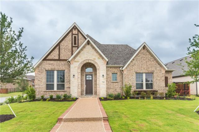 1700 Granite Range Lane, Arlington, TX 76005 (MLS #14089073) :: Kimberly Davis & Associates