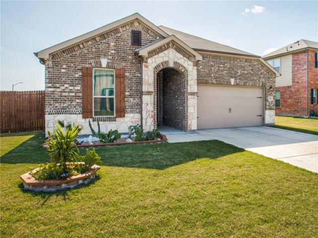 4513 Ivey Glen Lane, Balch Springs, TX 75180 (MLS #14089535) :: Lynn Wilson with Keller Williams DFW/Southlake