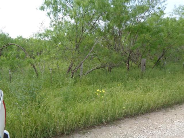 0 Co Rd 147, Kaufman, TX 75142 (MLS #14089796) :: The Mitchell Group