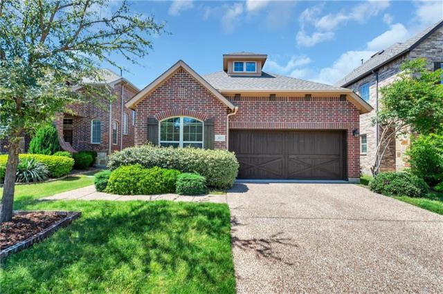 3017 White Stag Way, Lewisville, TX 75056 (MLS #14089829) :: The Hornburg Real Estate Group