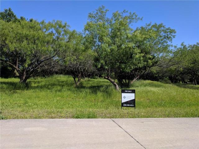 2506 Tamaron Cove, Cedar Hill, TX 75104 (MLS #14089861) :: Century 21 Judge Fite Company