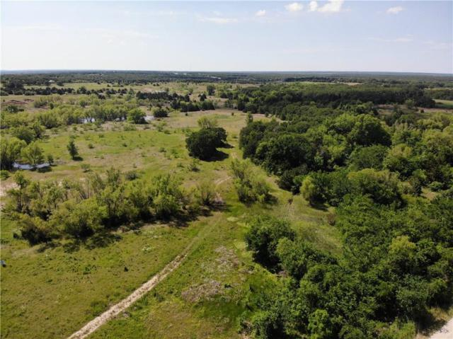 299 Pink Wilson Road, Bowie, TX 76230 (MLS #14090579) :: The Hornburg Real Estate Group