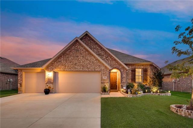 201 Acadia Lane, Forney, TX 75126 (MLS #14091010) :: The Chad Smith Team