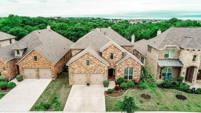 9008 Kaitlyn Court, Lantana, TX 76226 (MLS #14091374) :: Real Estate By Design