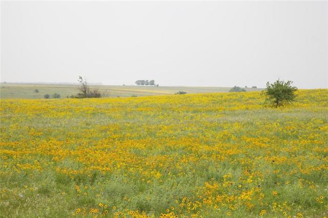 12401 W Rocky Creek Road Lot 61, Crowley, TX 76036 (MLS #14091461) :: The Chad Smith Team