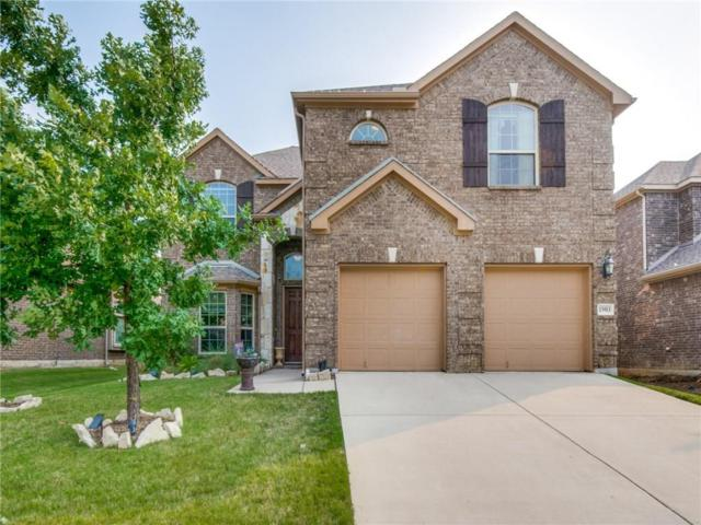 13913 Blueberry Hill Drive, Little Elm, TX 75068 (MLS #14092147) :: The Real Estate Station