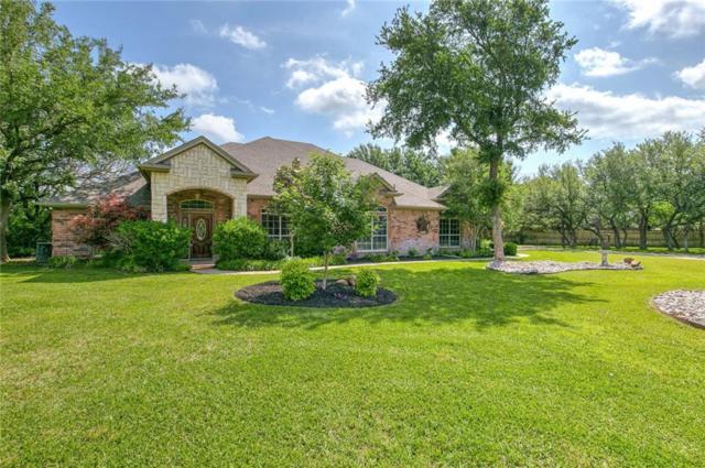220 Verde Court, Willow Park, TX 76087 (MLS #14092233) :: The Heyl Group at Keller Williams
