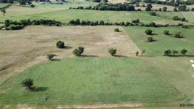 Lot 355 Grandview, Athens, TX 75752 (MLS #14092695) :: The Mitchell Group