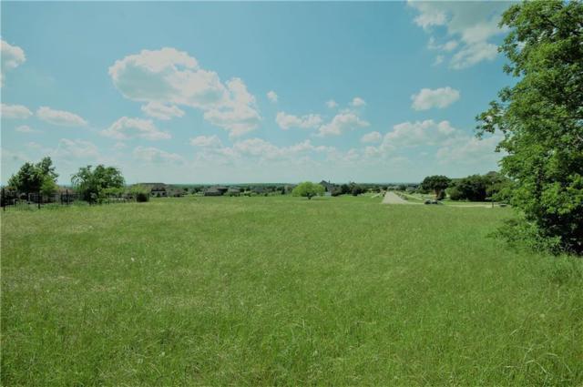 2134 Rohne Drive, Cedar Hill, TX 75104 (MLS #14093342) :: Century 21 Judge Fite Company