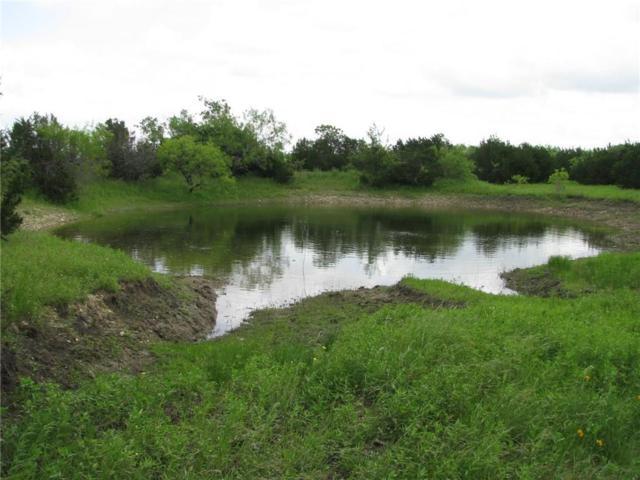 13 County Road 3900, Lampasas, TX 76550 (MLS #14093872) :: Team Hodnett