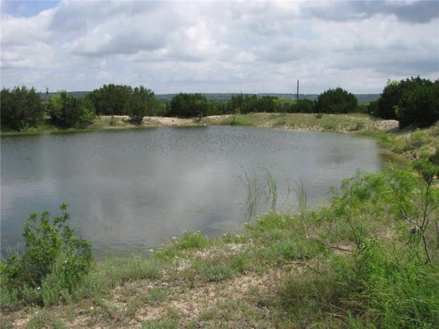 13 County Road 3900, Lampasas, TX 76550 (MLS #14093890) :: Team Hodnett