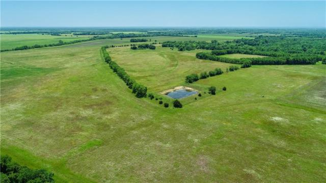TBD County Road 26900 85B, Petty, TX 75470 (MLS #14094425) :: RE/MAX Town & Country