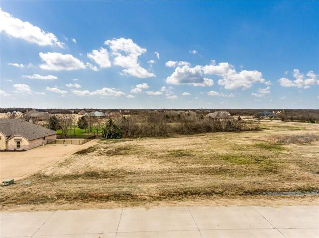1750 Winding Creek Lane, Rockwall, TX 75032 (MLS #14094628) :: The Chad Smith Team