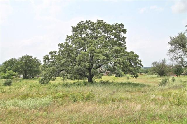 Lot 27 Black Hawk Trail, Glen Rose, TX 76043 (MLS #14095357) :: Real Estate By Design