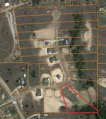 Lot 5 North Ridge Court, Weatherford, TX 76088 (MLS #14095466) :: The Real Estate Station