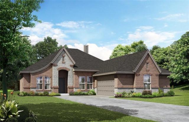1716 Whispering Trail Drive, Waxahachie, TX 75165 (MLS #14095480) :: Kimberly Davis & Associates