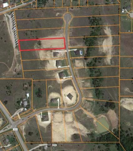 Lot 19 North Ridge Court, Weatherford, TX 76088 (MLS #14095535) :: The Real Estate Station