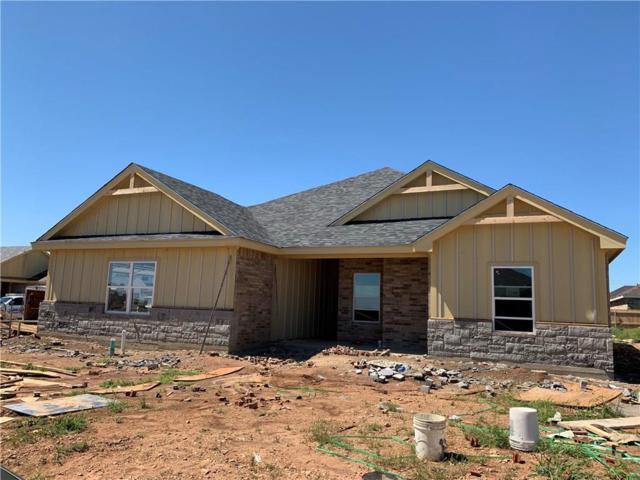 244 Sophia Lane, Abilene, TX 79602 (MLS #14095782) :: Ann Carr Real Estate
