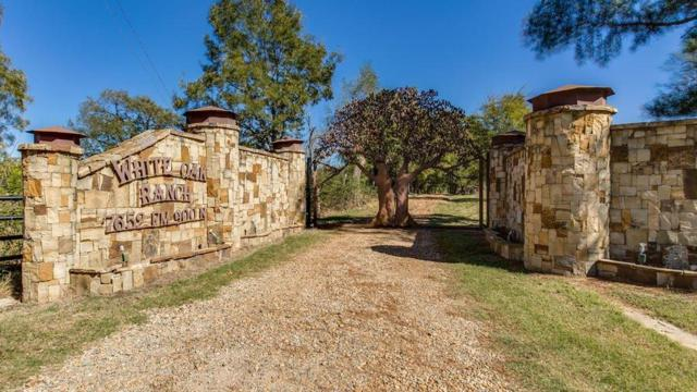 7652 Farm Road 900 N, Sulphur Bluff, TX 75481 (MLS #14095945) :: The Hornburg Real Estate Group