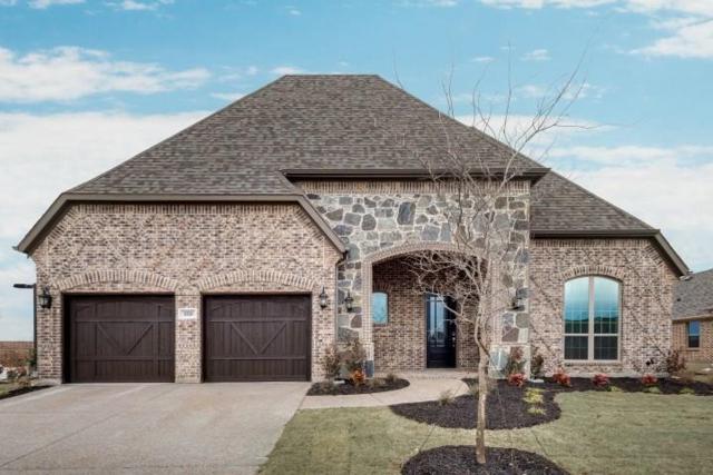 1010 Waterview Drive, Prosper, TX 75078 (MLS #14096197) :: The Paula Jones Team | RE/MAX of Abilene