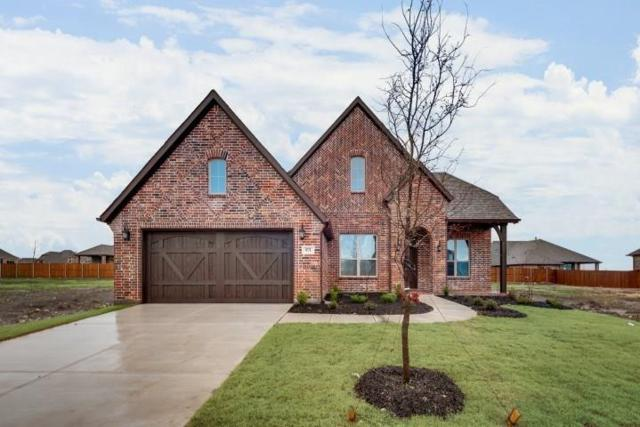 971 Waterview Drive, Prosper, TX 75078 (MLS #14096198) :: The Paula Jones Team | RE/MAX of Abilene
