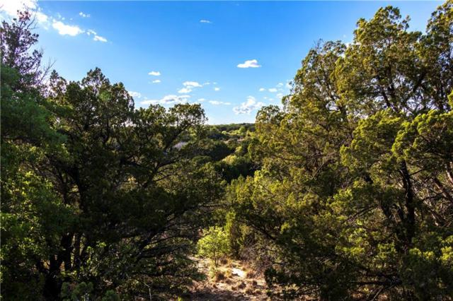 TBD 10 Acres County Road 606, Tuscola, TX 79562 (MLS #14096250) :: Ann Carr Real Estate