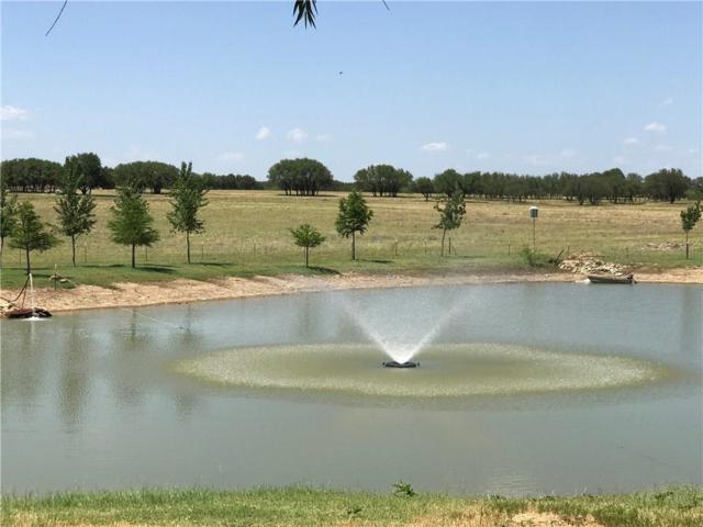 1100 Cr 141, Coleman, TX 76834 (MLS #14096309) :: The Hornburg Real Estate Group