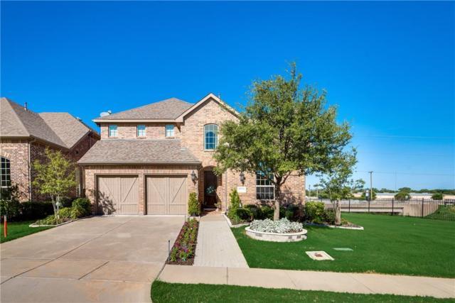 6114 Hollywood Drive, Irving, TX 75039 (MLS #14096442) :: The Star Team | JP & Associates Realtors