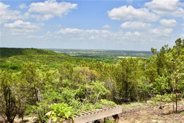110 Compass Way, Bluff Dale, TX 76433 (MLS #14096832) :: Hargrove Realty Group