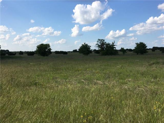 26175 S Farm Road 219, Dublin, TX 76446 (MLS #14097748) :: Kimberly Davis & Associates