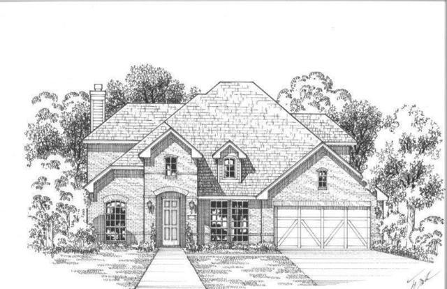 16301 Cullen Park Way, Prosper, TX 75078 (MLS #14097801) :: Kimberly Davis & Associates