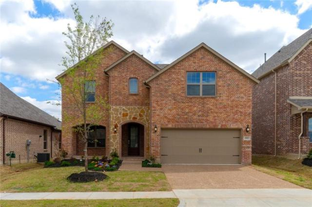 5921 Marigold Drive, Mckinney, TX 75071 (MLS #14097849) :: The Heyl Group at Keller Williams