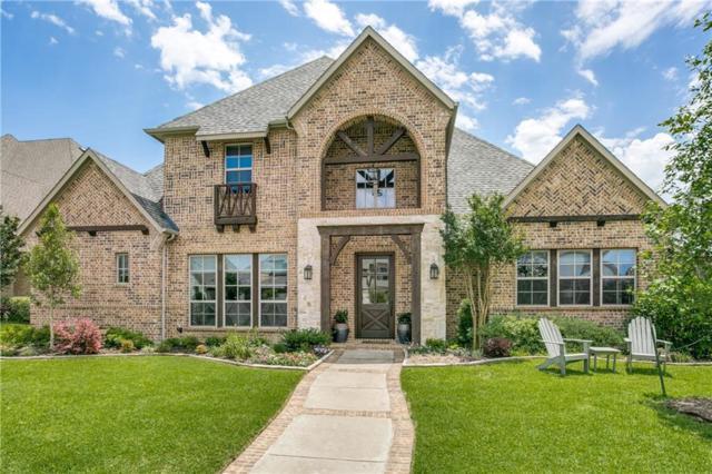 9768 Spring Branch Drive, Dallas, TX 75238 (MLS #14098201) :: HergGroup Dallas-Fort Worth