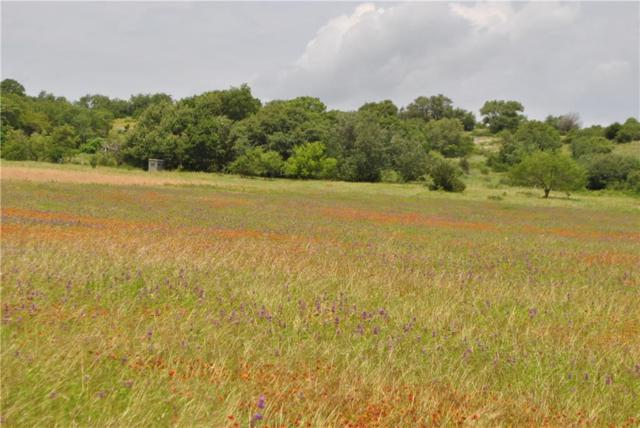 TBD County Rd 207, Blanket, TX 76432 (MLS #14098779) :: The Heyl Group at Keller Williams