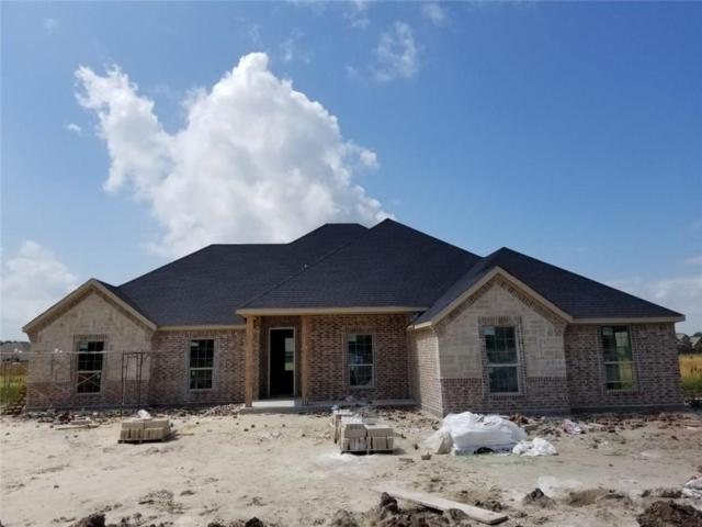 6566 Oak Point Circle, Royse City, TX 75189 (MLS #14098793) :: Kimberly Davis & Associates