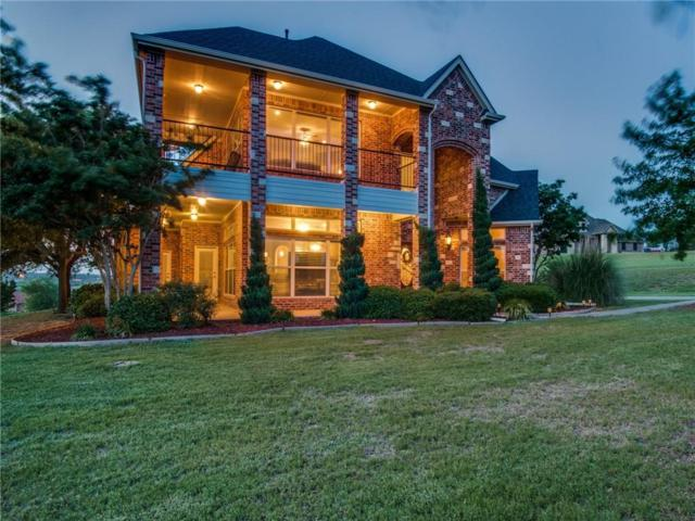 3721 S Lighthouse Hill Lane, Fort Worth, TX 76179 (MLS #14099124) :: Kimberly Davis & Associates