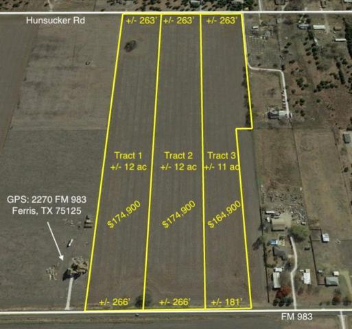 TBD 12 Fm 983, Ferris, TX 75125 (MLS #14099151) :: The Mitchell Group