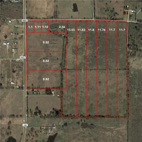 Tract 2 Co Road 4062, Scurry, TX 75158 (MLS #14099320) :: Kimberly Davis & Associates