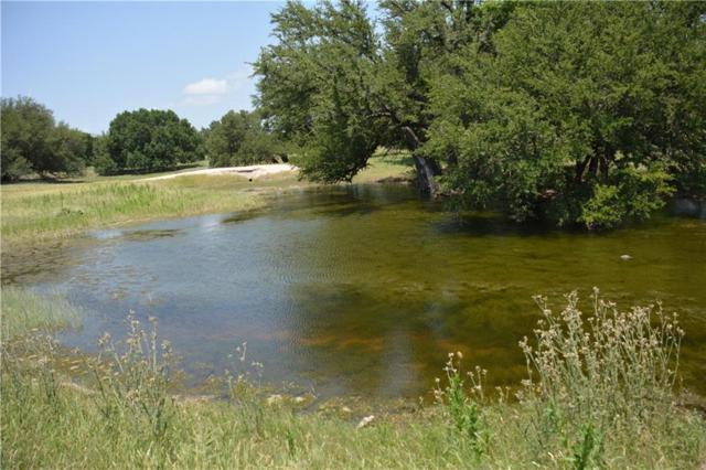 350 Cr 120, Goldthwaite, TX 76844 (MLS #14099364) :: RE/MAX Town & Country