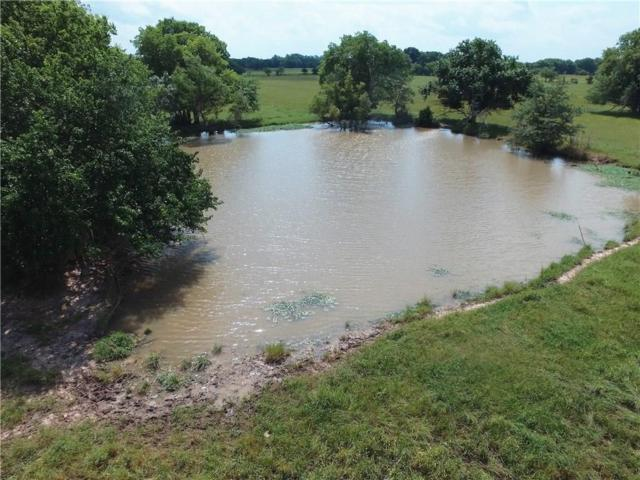 TBD County Road 4510, Cooper, TX 75432 (MLS #14099407) :: The Sarah Padgett Team