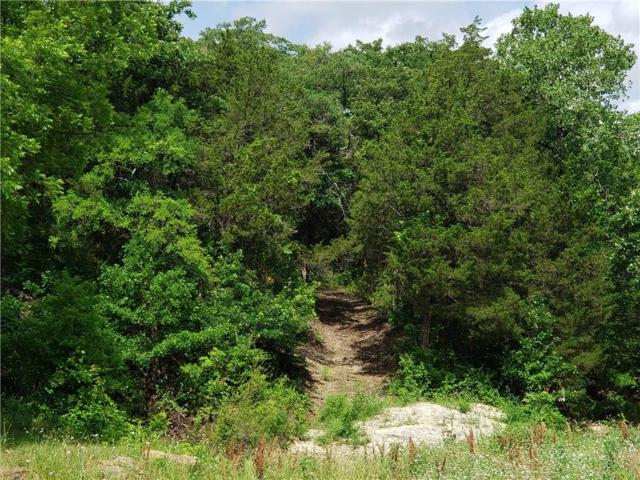 400 Elm Springs Court, Cedar Hill, TX 75104 (MLS #14099637) :: Century 21 Judge Fite Company