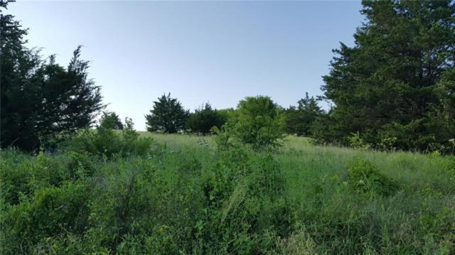 Lot 9 (B) County Rd 618, Farmersville, TX 75442 (MLS #14099896) :: RE/MAX Pinnacle Group REALTORS