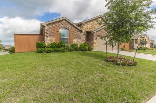 4001 Indian Paintbrush Lane, Heartland, TX 75126 (MLS #14101126) :: The Real Estate Station