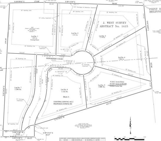 5801 Pepperport Ct, Double Oak, TX 75077 (MLS #14102662) :: Baldree Home Team