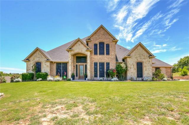 182 Deer Creek Drive, Aledo, TX 76008 (MLS #14103001) :: Potts Realty Group