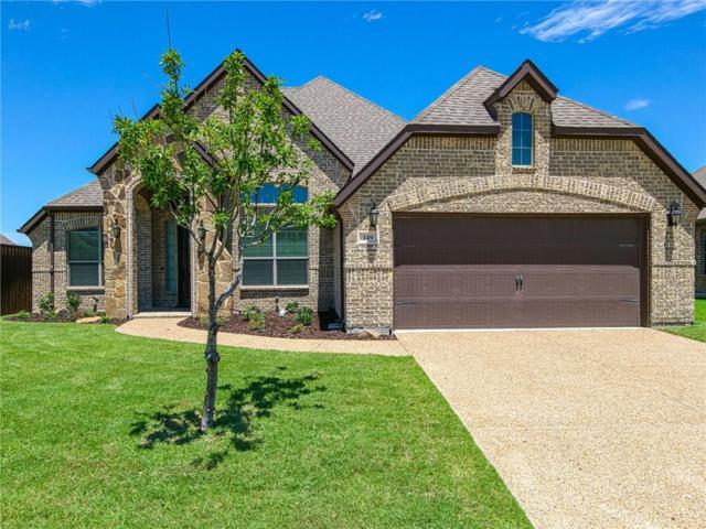 149 Stevenson Drive, Fate, TX 75087 (MLS #14103437) :: Baldree Home Team